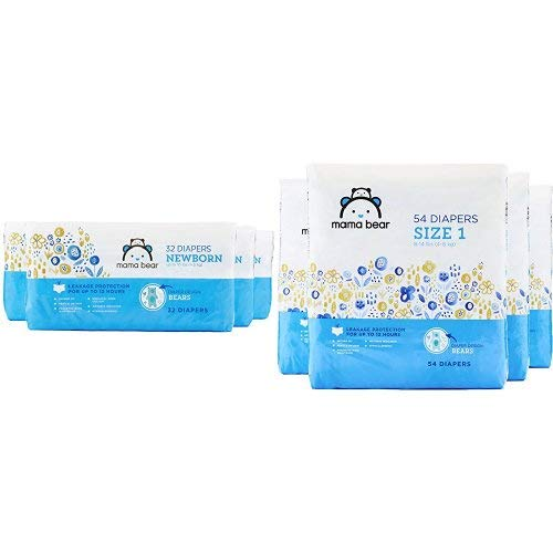 6-Month Subscription to Mama Bear Diapers