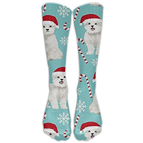 Maltese Dogs Xmas Holiday Knee High Graduated Compression Socks For Women And Men - Best Medical, Nursing, Travel & Flight - Maltese Womens