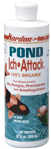 KORDON  #31086  Pond Ich Attack Liquid for Aquarium, 16-Ounce