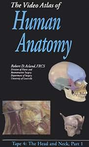 The Video Atlas of Human Anatomy - Vol. 4