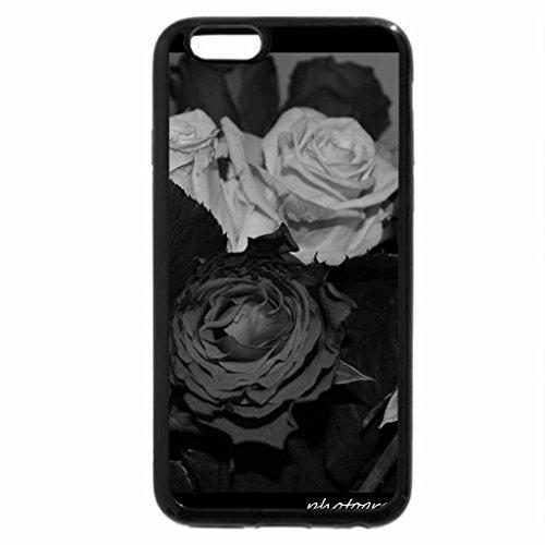 iPhone 6S Plus Case, iPhone 6 Plus Case (Black & White) - dying roses