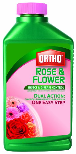 Ortho 9900610 Rose and Flower Insect and Disease Control Concentrate, 32-Ounce (Not for sale in New York) (Older