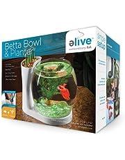 Elive Betta Bowl and Planter, White.75 Gallon