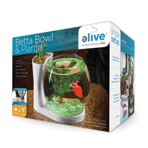 Elive Betta Fish Bowl / Betta Fish Tank with Planter, Small 0.75 Gallon Aquarium, LED Light Timer, ()