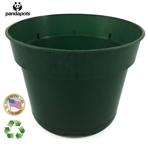 30 Plant Pots - 5 Inch Diameter - 100% Recycled Plastic - Made in USA - Strong, Reusable - Green (In Pot Plant Plastic)