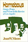 Homeboys : Gangs, Drugs and Prison in the Barrios of Los Angeles, Moore, W. Joan and Garcia, Carlos, 0877221219
