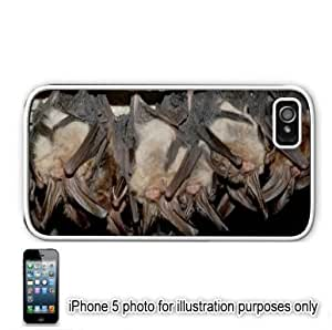 Bats Hanging In A Cave Photo Apple iPhone 5 Hard Back Case Cover Skin White
