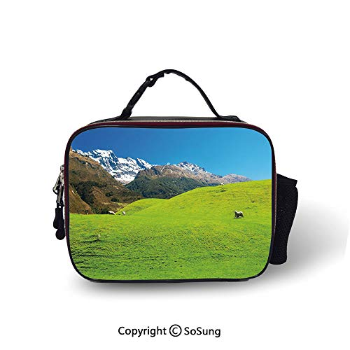 Nature Cooler Bag Detachable Idyllic Hills Mountain Land Farm New Zealand Snowy Peaks Spring Landscape Smooth zipper for lunch bag,10.6x8.3x3.5 inch,Lime Green Brown Blue