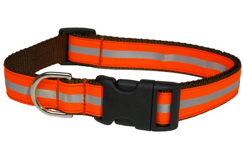 Sassy Dog Wear 18-28-Inch Reflective Orange Dog Collar, - Dog Collar Orange