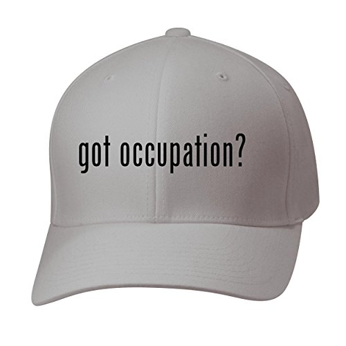 BH Cool Designs Got Occupation? - Baseball Hat Cap Adult, Silver, Large/X-Large (Occupation Sensor Switch)