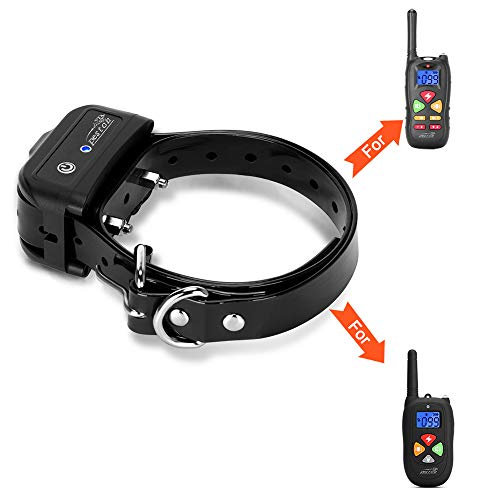 PESTON P12 Collar – Dog Training Kits for P12 Dog Training Collar Review