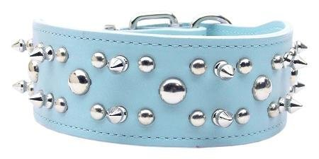 Baby Blue Foxy Rodeo Leather Collar 21 by Mirage