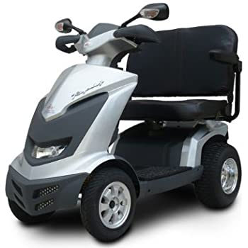 Amazon.com: EV Rider Royale 4 Cargo Two-Seater Electric