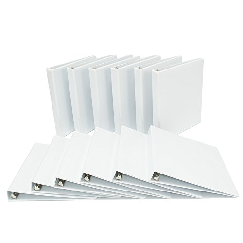 Binders.com 1 Inch D-Ring Heavy Duty Customizable / View Binder, White, Pack of 12 (11100SLNTD) (1 Com)