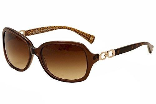 Coach Women 1099081002 Brown Sunglasses