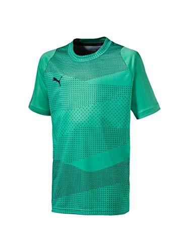 自信がある鋸歯状高揚した[プーマ] サッカーウェア FTBLNXT グラフィックシャツ コア 656059 [ジュニア] キッズ