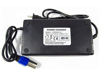 Amazon.com: FidgetFidget 54.6V - Micrófono con cargador para ...