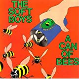 Can of Bees