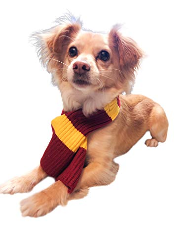 Harry Potter Pet Costume - ComfyCamper Scarf for Dog Costumes, Clothes