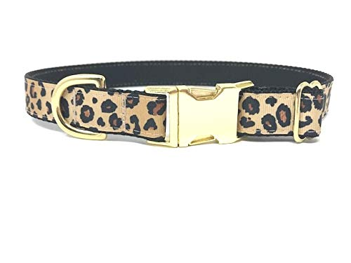 Big Pup Pet Fashion Fancy, Trendy, Glam, Leopard Print Dog Collar with Gold Buckle and Hardware (XL 1