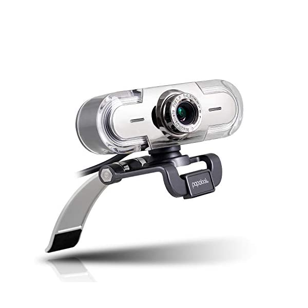 Webcam 1080P Full HD PC Skype Camera PAPALOOK PA452 Web Cam with Microphone Video Calling and Recording