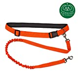 Furhaven Pet Dog Leash   Trail Pup Hands-Free Walking & Running Outdoor Activity Waist Belt Stretchy Bungee Pet Leash for Dogs & Cats, Safety Orange, One Size