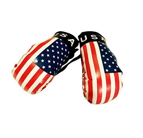 Flag Mini Small Boxing Gloves to Hang Over Car Automobile Mirror – Americas (Country: USA)