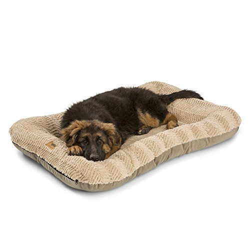 Cheap West Paw Design Heyday Dog Bed with Microsuede, Super Durable and Easy to Clean Pet Bed, Plush Oatmeal, Large