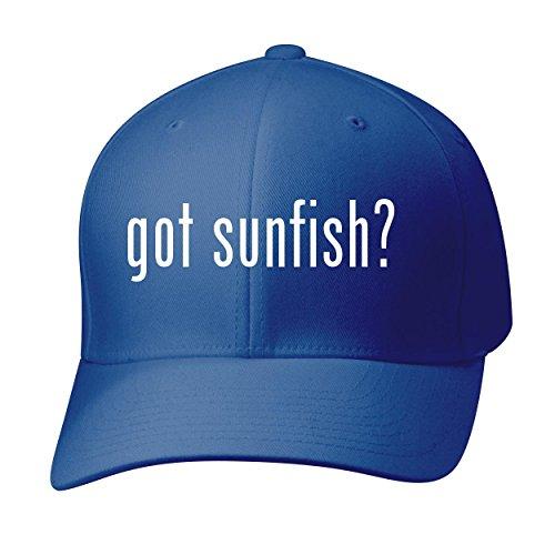 BH Cool Designs Got Sunfish? - Baseball Hat Cap Adult, Blue, Small/Medium