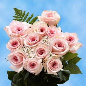 GlobalRose 1 Dozen Pink Roses & Fillers - Notable Charming! (Pink Roses 1 Dozen)