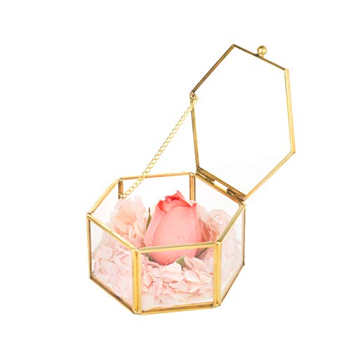 Feyarl Gold Jewelry Trinket Glass Box Ornate Ring Earring Box Preserved Flower Glass Box Decorative Box