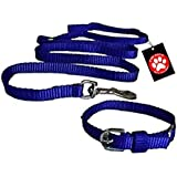 Pawzone Nylon Leash With Collar Set For Puppy - Blue
