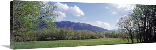 - greatBIGcanvas Cades Cove Great Smoky Mtns National Park TN Photographic Print with Black Frame, 48