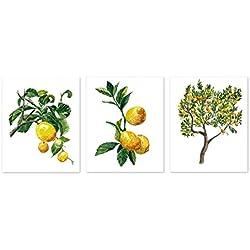 Botanical prints wall art #A011 - Set of 3 prints(8x10 inches).Lemon tree wall art, Lemon print,lemon tree watercolor painting. Yellow home decor, Fruit painting,Fruit prints.Lemon posters.