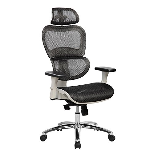 Techni Mobili Deluxe High Back Mesh Office Executive Chair with Neck Support. Color: Black