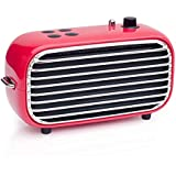 Retro Wireless Speaker, Lofree Poison, Portable Speaker with Bluetooth 4.2, HD Sound and Enhanced Bass, 20W Loud Output, FM Radio with Vintage Look, Unique Design, Ideal Gift for Men/Women/Teenagers