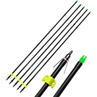 AMEYXGS 6/12pcs Archery Fiberglass Bowfishing Arrow Bow Fishing Arrows with Broadheads and Safty Slides for Compound and Bow Recurve Bow Fishing Hunting