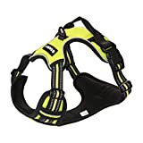Cheap Gasky Dog No Pull Pet Harness – Easy Walk Freedom Small Medium Large Dog Harness Adjustable Outdoor Reflective 1000D Oxford Material, No Chock Easy Control