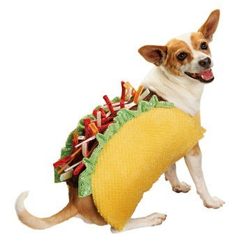 Bootique Taco Dog Costume - Large (Large)]()