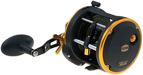 Penn Mulitrolle Angelrolle Meeresrolle Squall 20 Level Wind LH Reel Box