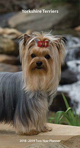 Yorkshire Terriers 2018 3.5 x 6.5 Inch Two Year Monthly Pocket Planner, Animals Small Dog Breeds Terrier Puppies