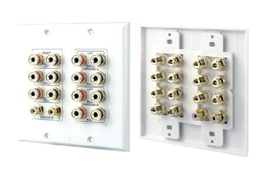 Dual Stereo Audio Wall Plate - 2
