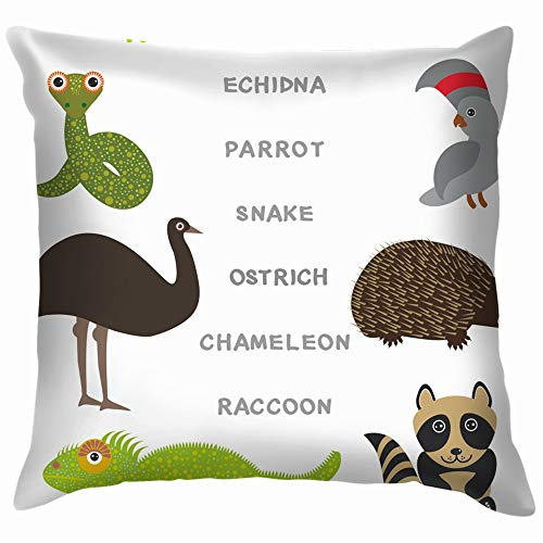 Kids Words Learning Game Worksheet Read Alphabetically Throw Pillow Case Cushion Cover Pillowcase Watercolor for Couch 20X20 Inch]()