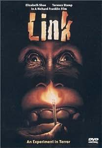 Link (Widescreen)