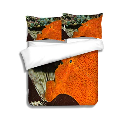 MTSJTliangwan Family Bed Giant Frogfish Grosser Anglerfish (Antennarius commerson) 3 Piece Bedding Set with Pillow Shams, Queen/Full, Dark Orange White Teal Coral