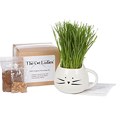 100% Organic pet grass kit/cat grass kit with cat grass planter. Natural hairball control and hairball remedy for cats. Natural digestive aid. Includes planter, Organic seed mix and organic soil. by The Cat Ladies