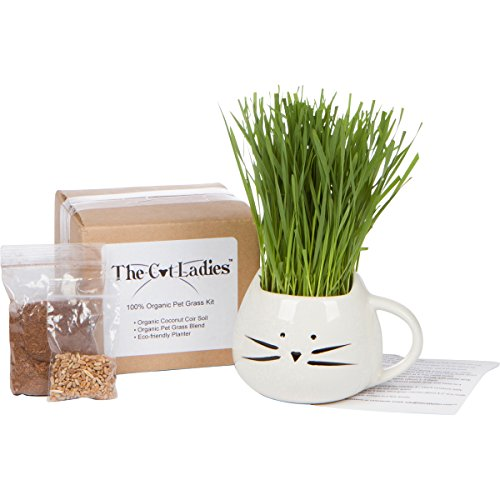 Organic Cat Grass Growing kit with Organic Seed Mix, Organic Soil and Cat Planter. Natural Hairball Control and...