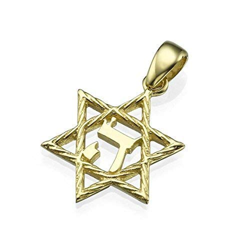 Baltinester Jewish Jewelry 14k Yellow Gold Textured Star of David Hebrew Letter Pendant Necklace
