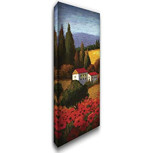 Tuscan Poppies Panel I 20x60 Extra Large Gallery Wrapped Stretched Canvas Art by Parrocel