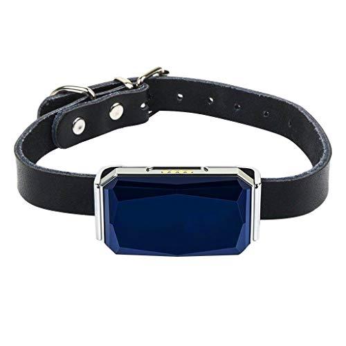 (YESjikil Dog GPS Tracker ,Gemstone Ip67 Waterproof Pet GPS Locator Dog Cat Cattle Sapphire waterproof pet GPS locator Dog band Belt charging cable)